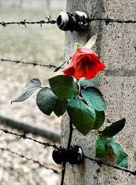 27 gennaio 1945 - giornata della memoria